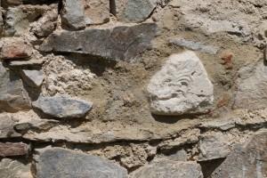 1 Palmeta originál v stene (foto D. Pivko 2014)